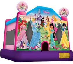 Licensed Theme Disney Princess